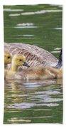 Goslings Bath Towel