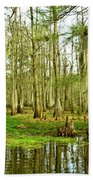 Grand Bayou Swamp Bath Towel