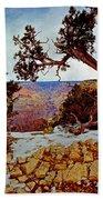 Grand Canyon National Park - Winter On South Rim Bath Towel