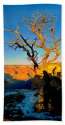 Grand Canyon National Park Winter Sunrise On South Rim Bath Towel