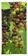 Grape Harvest Bath Towel