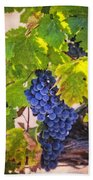 Grapevine With Texture Hand Towel