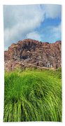 Grass Along John Day River In Central Oregon Hand Towel