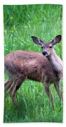 Grassy Doe Bath Towel