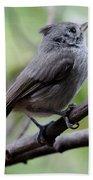 Gray Grey Bird 052814aa Bath Towel
