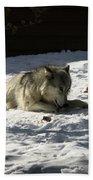 Gray Wolf 2 Bath Towel