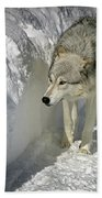 Gray Wolf 7 Bath Towel