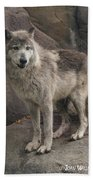 Gray Wolf On A Rock Bath Towel