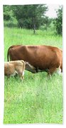 Grazing Cow And Calf Bath Towel