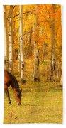 Grazing Horse In The Autumn Pasture Bath Towel