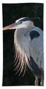 Great Blue At Rest Hand Towel
