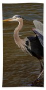 Great Blue Heron - Flooded Creek Bath Towel