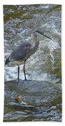 Great Blue Heron Standing In Stream Bath Towel