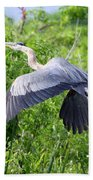 Great Blue Heron Takeoff Bath Towel