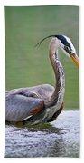 Great Blue Heron Wading Bath Towel