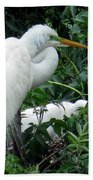 Great Egret 17 Bath Towel