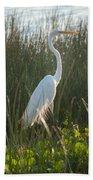 Great Egret At Coba Village Bath Towel