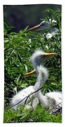 Great Egret Chicks 2 Bath Towel