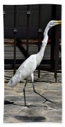 Great Egret In The Neighborhood Strutting 1 Bath Towel
