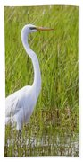 Great Egret In The Spring  Bath Towel