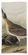 Great Esquimaux Curlew Bath Towel