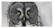 Great Gray Owl Portrait Bath Towel