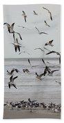 Great Gull Group On The Beach Bath Towel