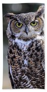 Great Horned Owl IIi Bath Towel