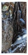 Great Horned Owl On Snowy Branch Bath Towel