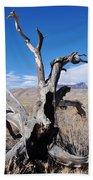 Great Sand Dunes National Park Fallen Tree Portrait Bath Towel