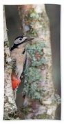 Great Spotted Woodpecker Bath Towel