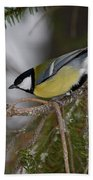 Great Tit Bath Towel
