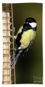Great Tit On Feeder  Hand Towel