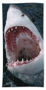 Great White Shark Jaws Bath Towel