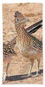 Greater Roadrunner Bird Hand Towel
