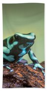 Green And Black Poison Dart Frog Bath Towel