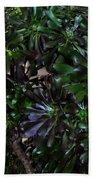 Green-black Cucculent Plant. Big Bush Bath Towel