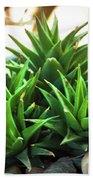 Green Cactus Bath Towel