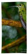 Green-crowned Brilliant Hummingbird Bath Towel