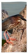Green Heron 1 Bath Towel