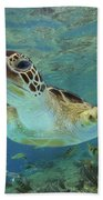 Green Sea Turtle Chelonia Mydas Bath Towel