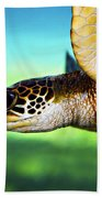 Green Sea Turtle Bath Towel