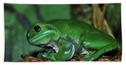 Green Tree Frog With A Smile Bath Towel