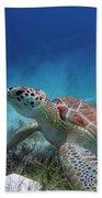 Green Turtle Hand Towel