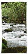 Greenbrier River Scene 2 Bath Towel