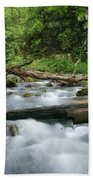 Greer Spring Branch 1 Bath Towel