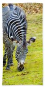 Grevys Zebra Left Bath Towel