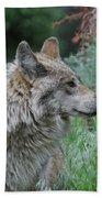 Grey Wolf Profile 2 Bath Towel
