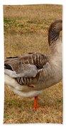 Greylag Goose 1 Bath Towel