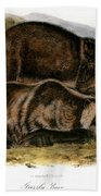 Grizzly Bear (ursus Ferox) Bath Towel
